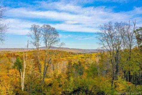 430432 Long Mountain New Milford CT 06776