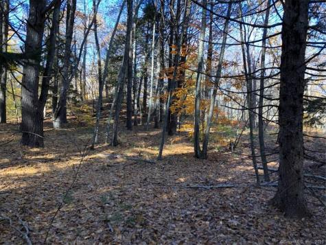 41 Whippoorwill Old Lyme CT 06371