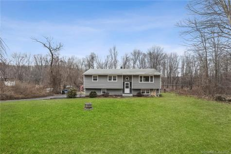 13 Bridge View New Fairfield CT 06812